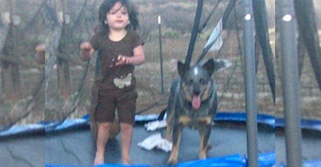 Викторија и нејзиното куче